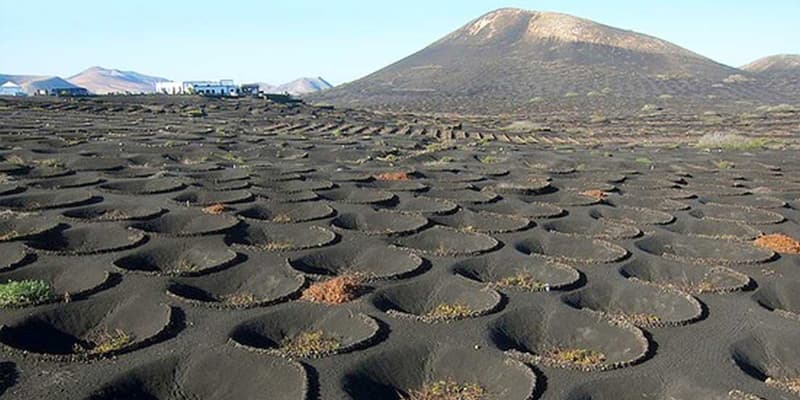 Alquila el Mejor Coche en Lanzarote